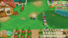 Story of Seasons : Friends of Mineral Town SWITCH